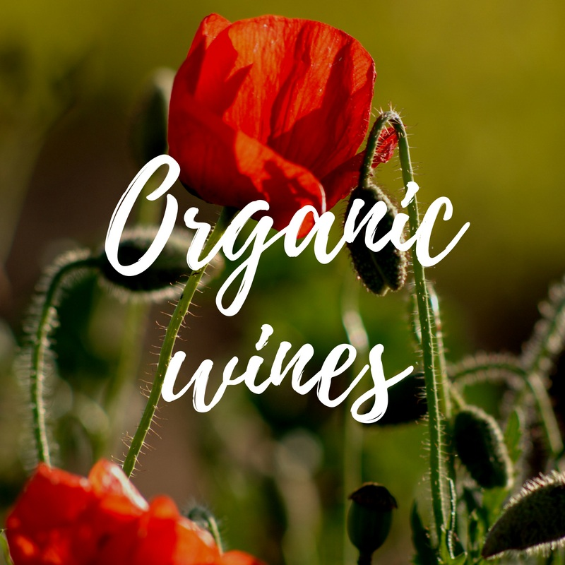 Celebrating European organic wines on Earth Day 2019
